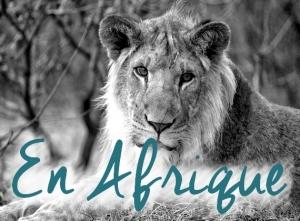 Nos conseils pour votre voyage en Afrique