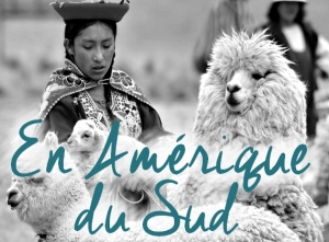 Nos conseils pour votre voyage en Amérique du Sud