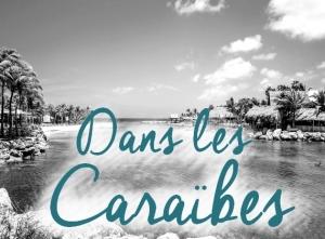 Nos conseils pour votre voyage dans les Caraïbes