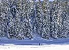 paysage montagne environnement Bagnères de Bigorre