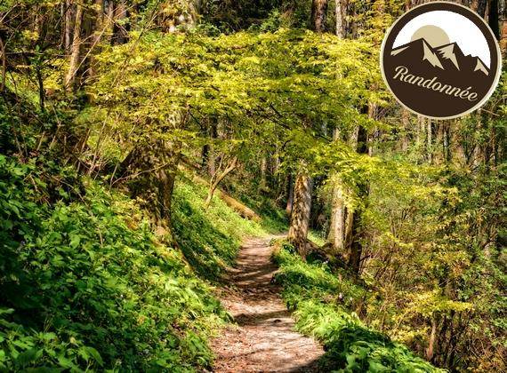 Séjour randonnée à Mesnil Saint Père avec Routes du Monde ATC