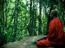meditation-1777522