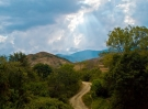 rural-road-320548